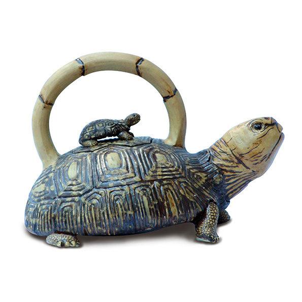 Teapot – Tortoise